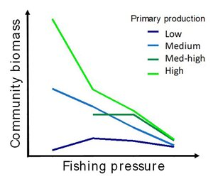 Fishing pressure had a negative relationship with community biomass, a trend which strengthened with increasing primary production