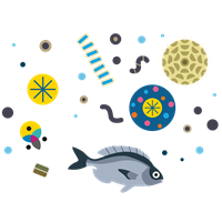 Fish and plankton icon